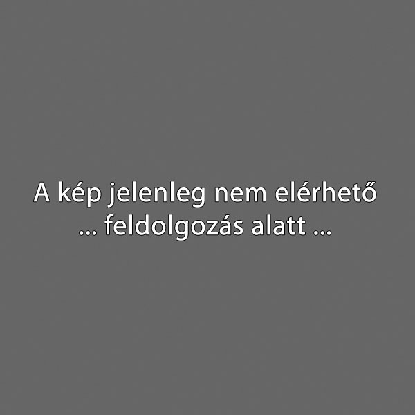 kekvirag66