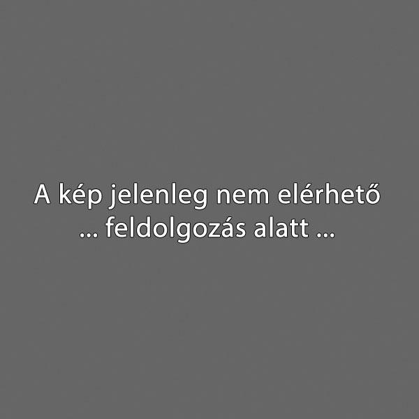 Hercegalovon